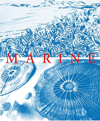 marine poster home